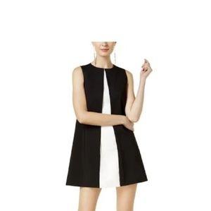 Rachel Zoe Colorblocked A-Line Dress - black/ecru